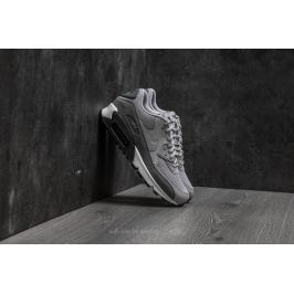 Nike Wmns Air Max 90 Cool Grey/ Wolf Grey-Anthracite