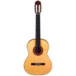José Torres Guitarra Flamenca JTF-30