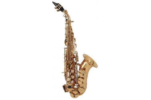 Roy Benson SG-302 Saxófonos soprano