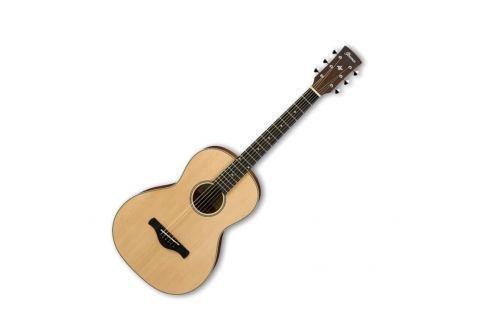 Ibanez AN60-LG Otras guitarras acústicas