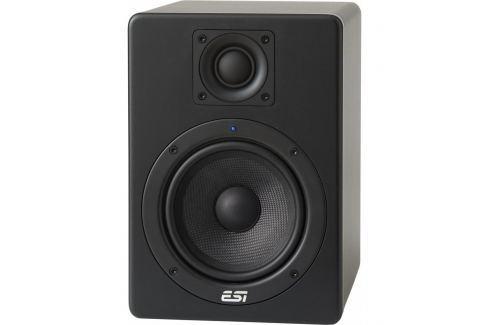 ESI aktiv 05 Monitores activos de grabación